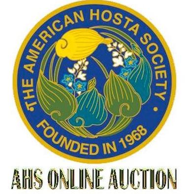 19 auction