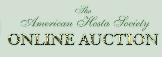 ahs auction banner